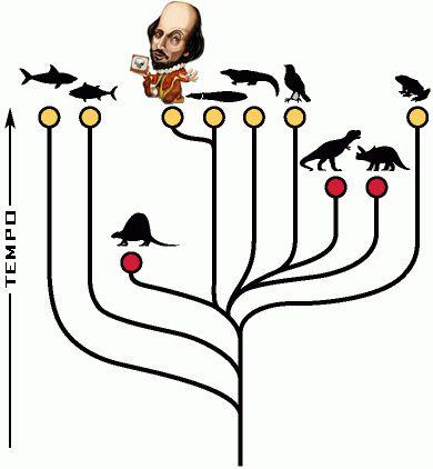 <em>Fig.1</em>: Árvore filogenética. Diversos estudos apontam ancestrais comuns entre o animal humano e outros animais.