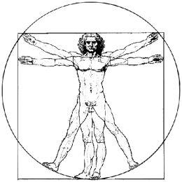 fig.6: <em>O homem vitruviano</em>. Ilustração feita a partir do documento original de Leonardo da Vinci (do gênero <em>Homo</em> e verdadeiramente <em>sapiens</em>)