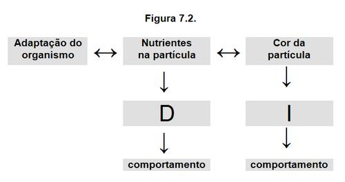 Figura 7.2