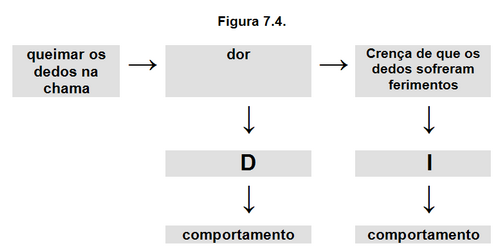 Figura 7.4